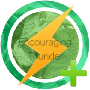 encouraging-thunder-e1427793461525